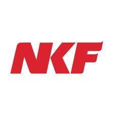 nkf singapore logo